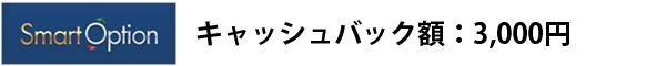 smartoptionキャッシュバック額:3000円